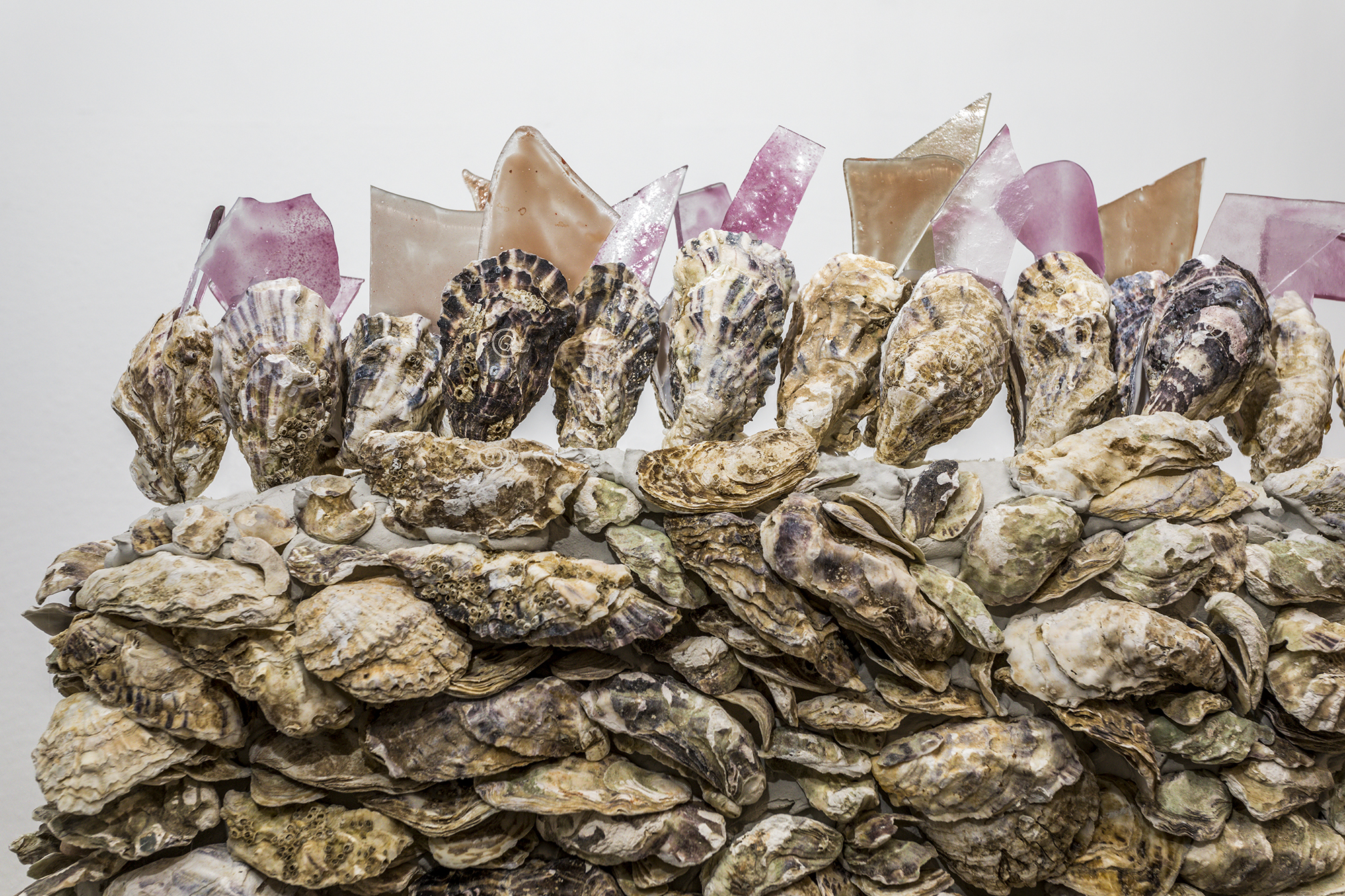 Giuseppina Giordano,THE WALL OF DELICACY (ode to China), 2018 / oyster shells, glass / 250x190x60 cm