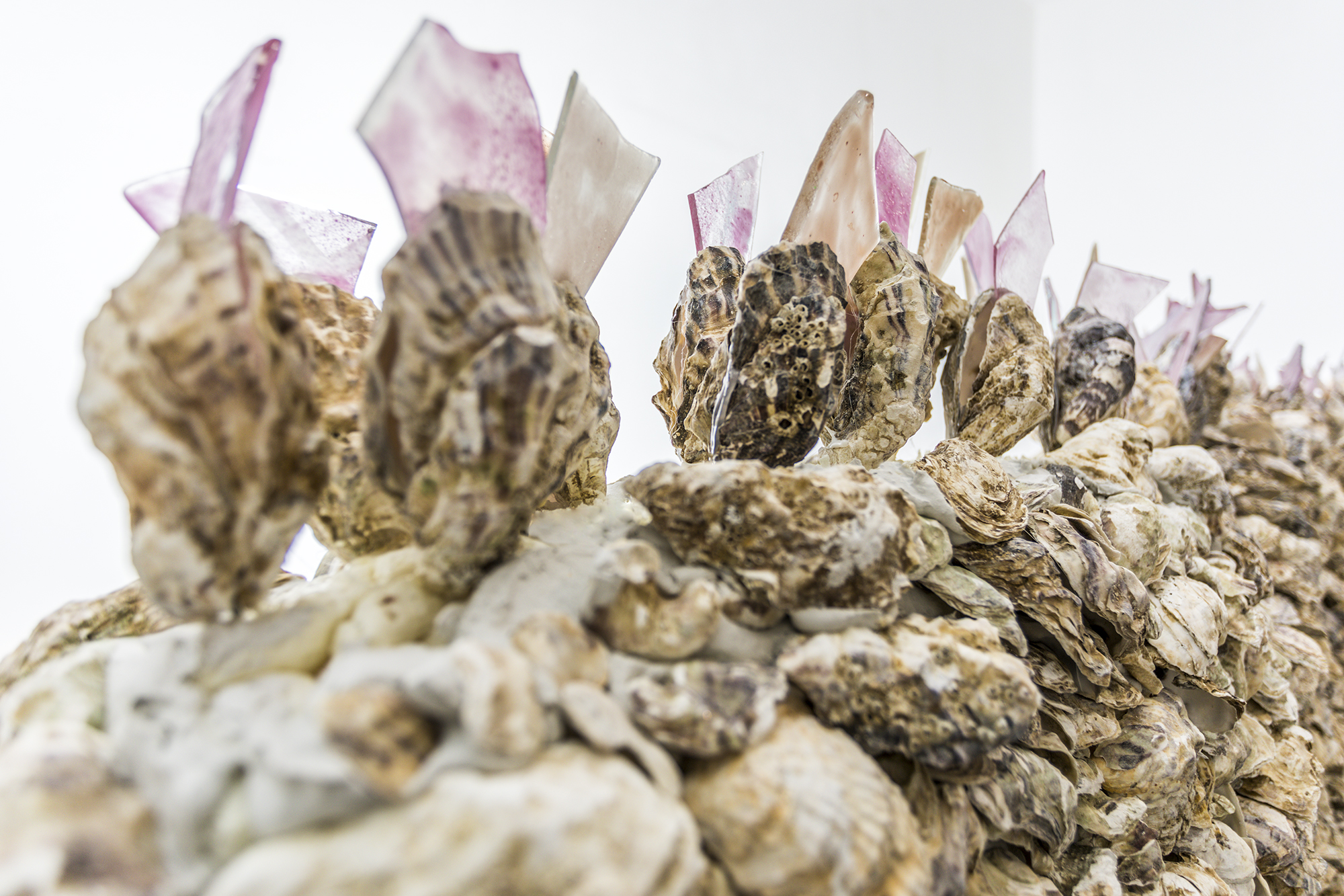 Giuseppina Giordano, THE WALL OF DELICACY (ode to China), 2018 / oyster shells, glass / 250x190x60 cm